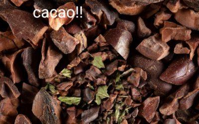 cacao-1-400x250